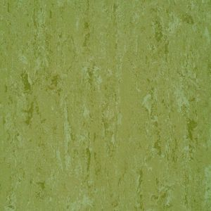 Linoleum 151-011 Avocado Green ru
