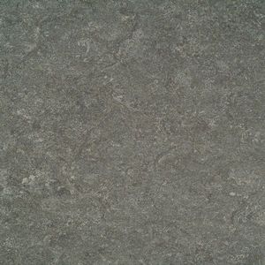 Linoleum 121-050 Quartz Grey eng