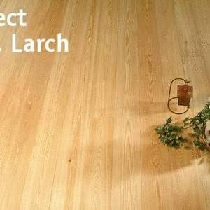 Floorboards Sib. Larch Select