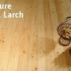 Floorboards Sib. Larch Nature