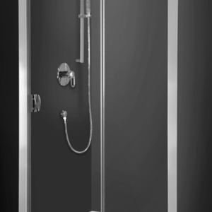 Shower door Exclusive Line ECD2 siver