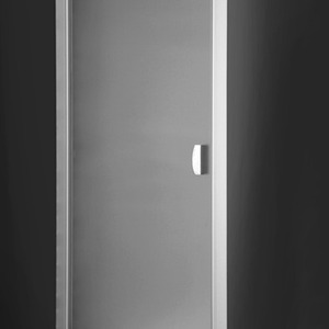 Shower door Exclusive Line ECDO1