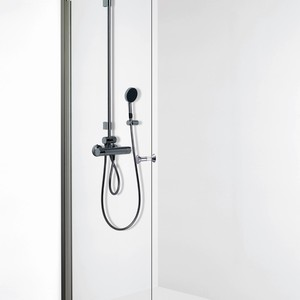 Shower door EXPRESS 812