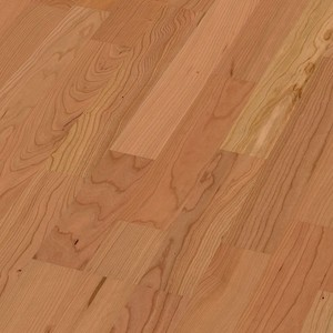 Parquet American cherry tree harmonious, 3-strip, lacquered