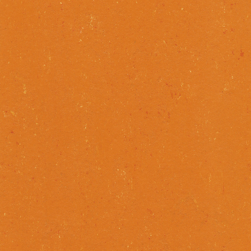 Linoleum 137-170  kumquat orange