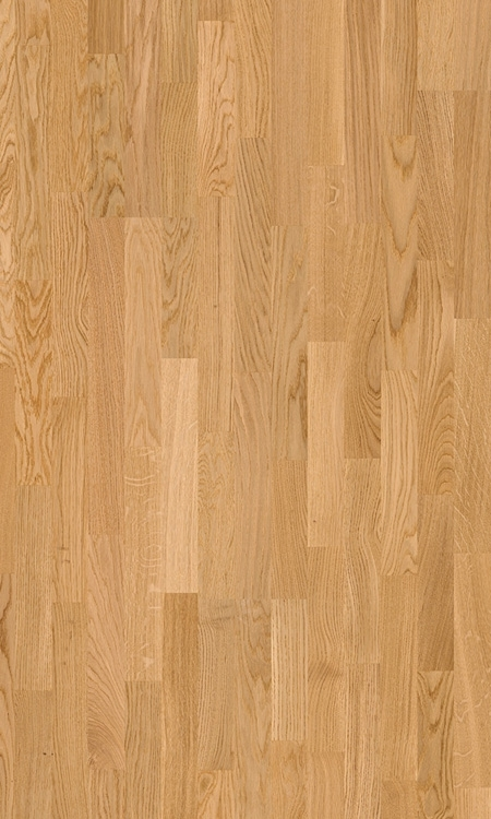 Parquet Natural noble oak satin, no groove, 3-strip, lacquered